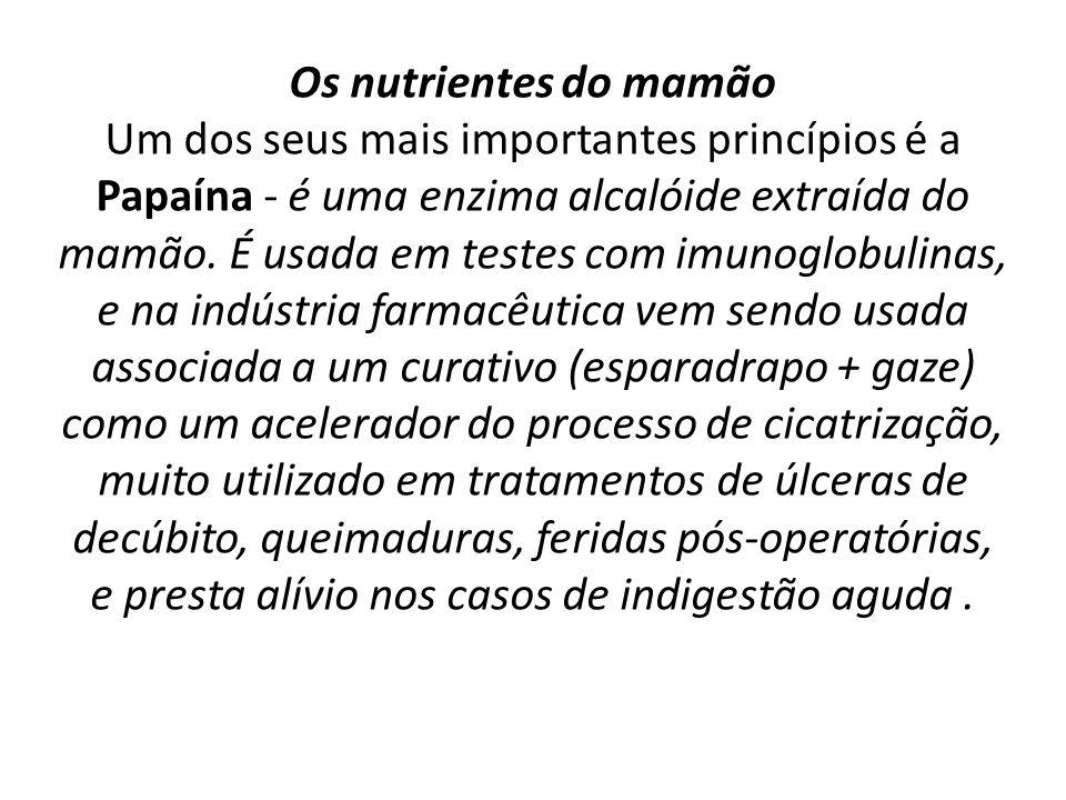 Os nutrientes do mamão Um dos seus mais importantes princípios é a Papaína - é uma enzima alcalóide extraída do mamão.