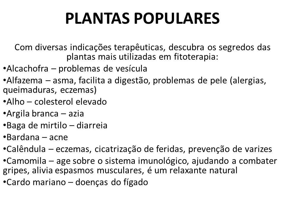 PLANTAS POPULARES Com diversas indicações terapêuticas, descubra os segredos das plantas mais utilizadas em fitoterapia: