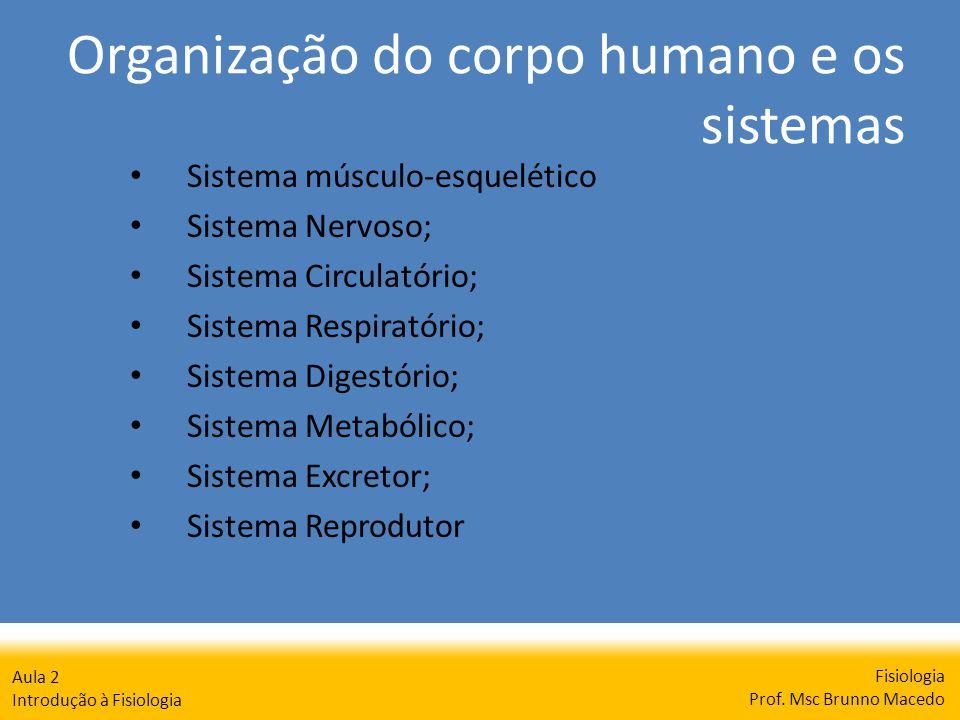 Organização do corpo humano e os sistemas