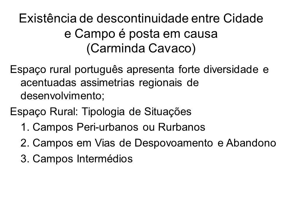 Existência de descontinuidade entre Cidade e Campo é posta em causa (Carminda Cavaco)