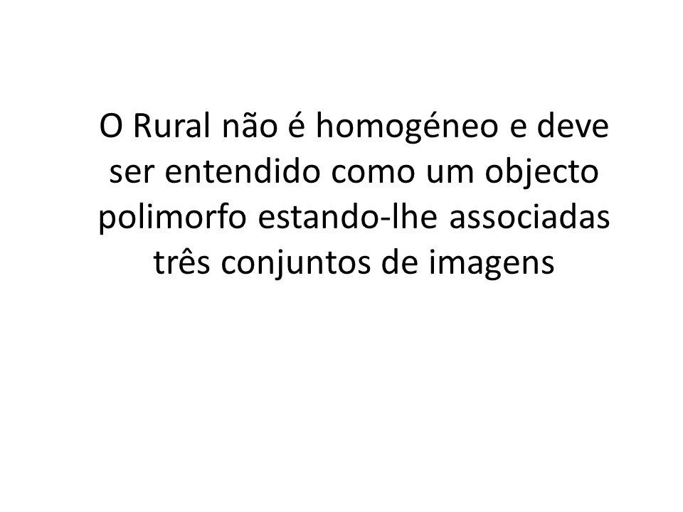 O Rural não é homogéneo e deve ser entendido como um objecto polimorfo estando-lhe associadas três conjuntos de imagens