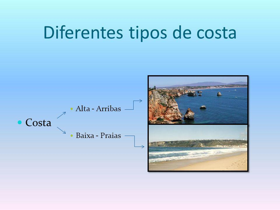 Diferentes tipos de costa