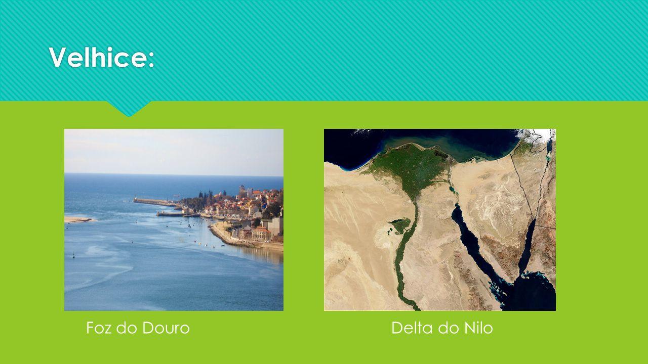 Velhice: Foz do Douro Delta do Nilo