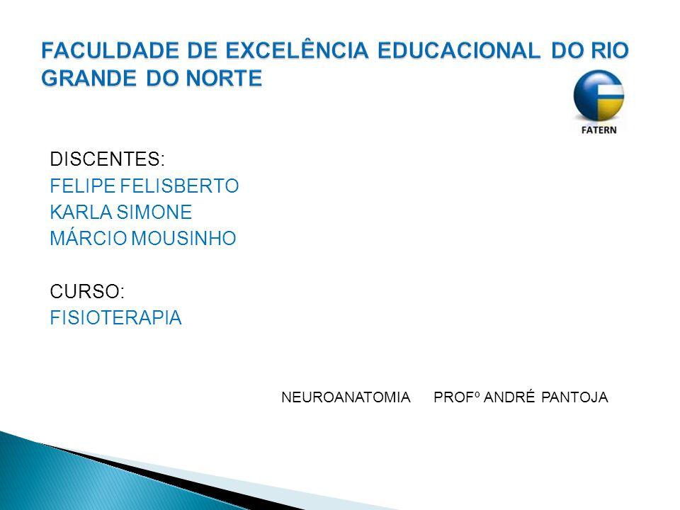 FACULDADE DE EXCELÊNCIA EDUCACIONAL DO RIO GRANDE DO NORTE