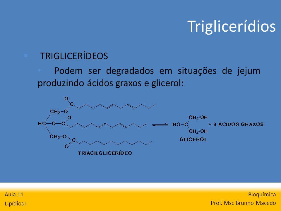 Bioquímica Prof. Msc Brunno Macedo