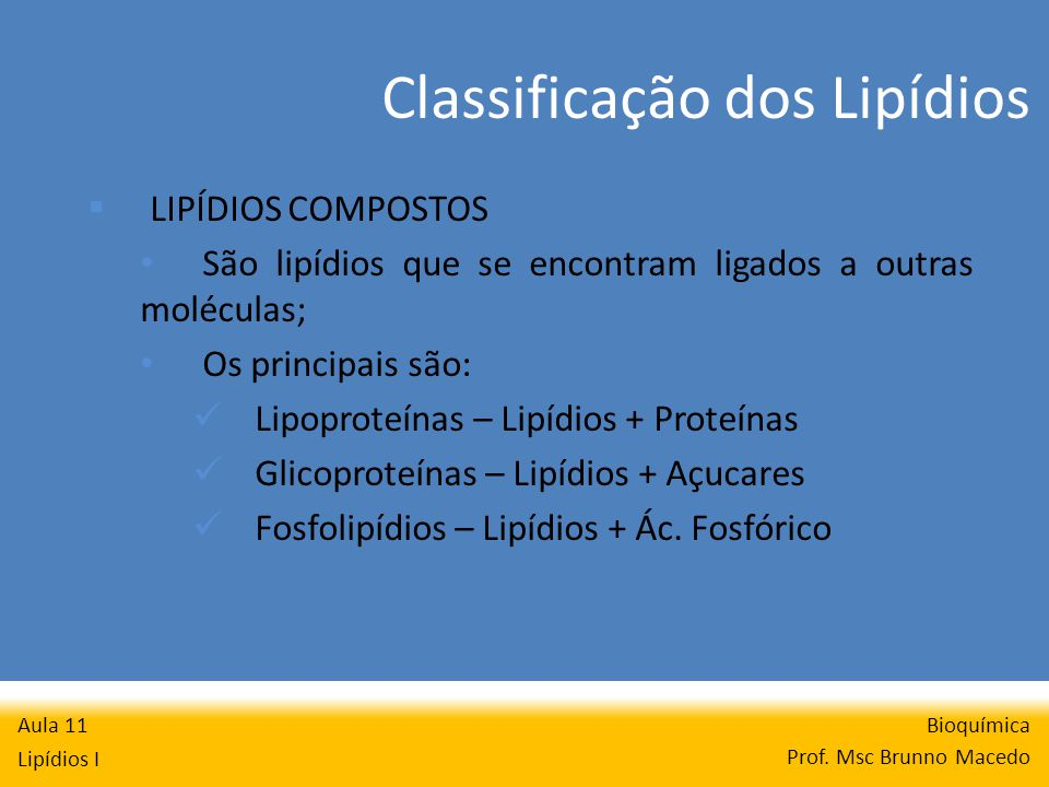Classificação dos Lipídios