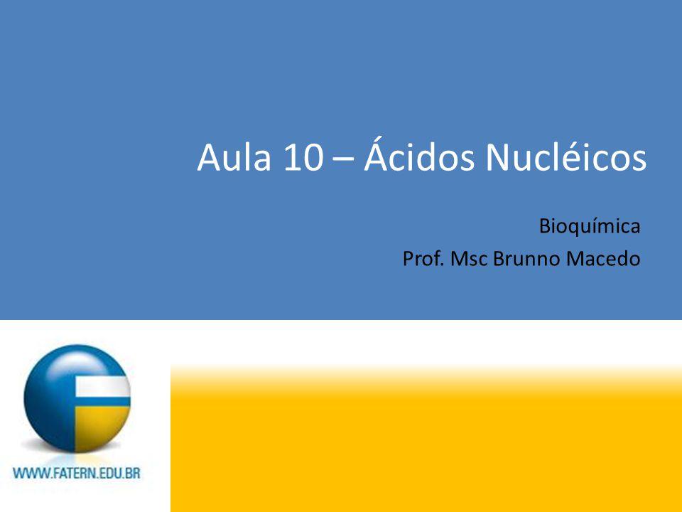 Aula 10 – Ácidos Nucléicos