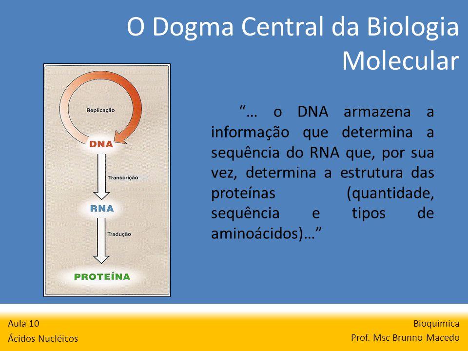 O Dogma Central da Biologia Molecular