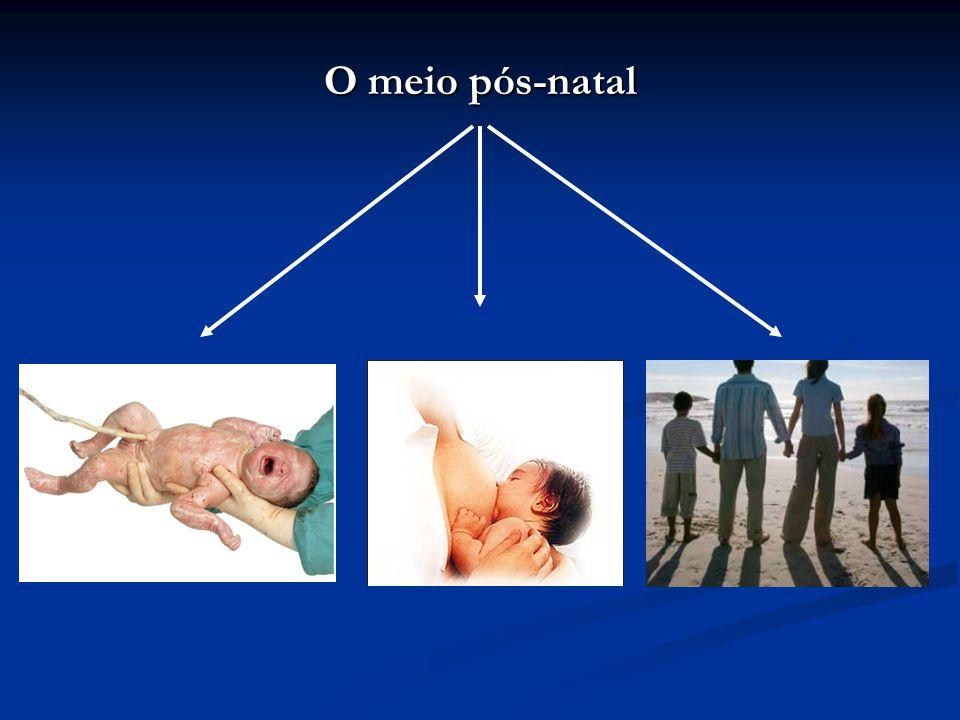 O meio pós-natal
