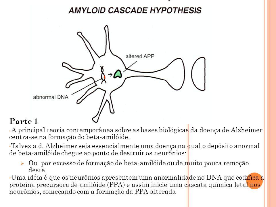 Parte 1 A principal teoria contemporânea sobre as bases biológicas da doença de Alzheimer centra-se na formação do beta-amilóide.