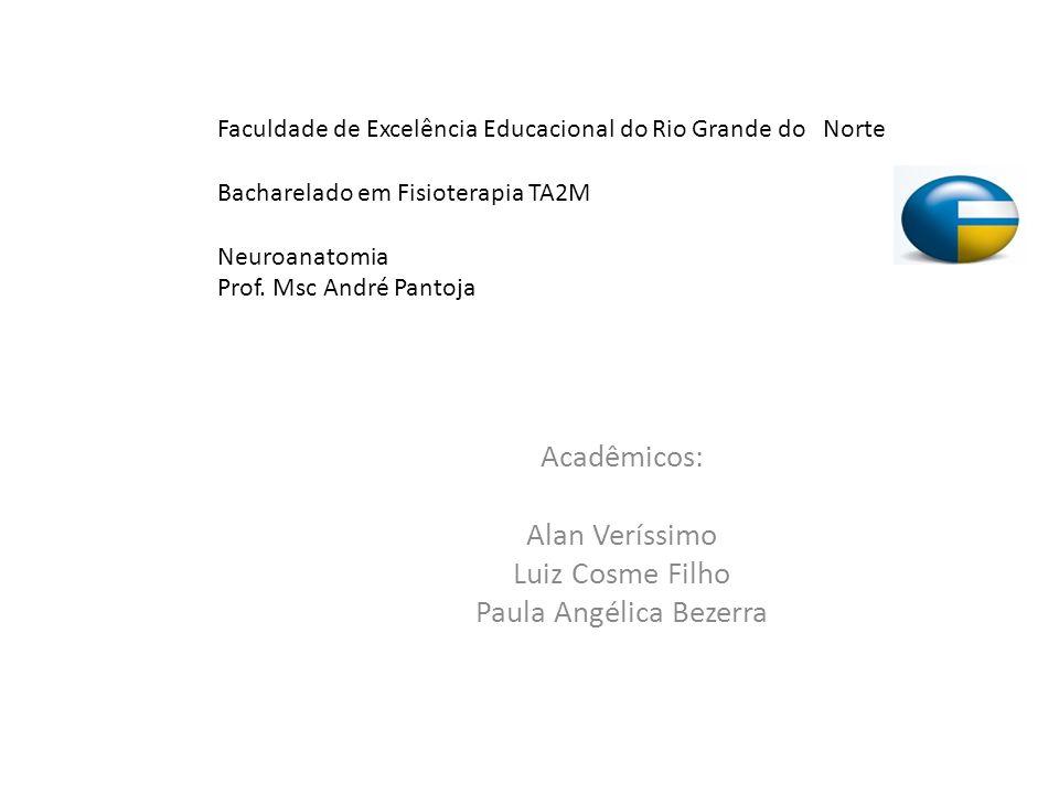 Acadêmicos: Alan Veríssimo Luiz Cosme Filho Paula Angélica Bezerra