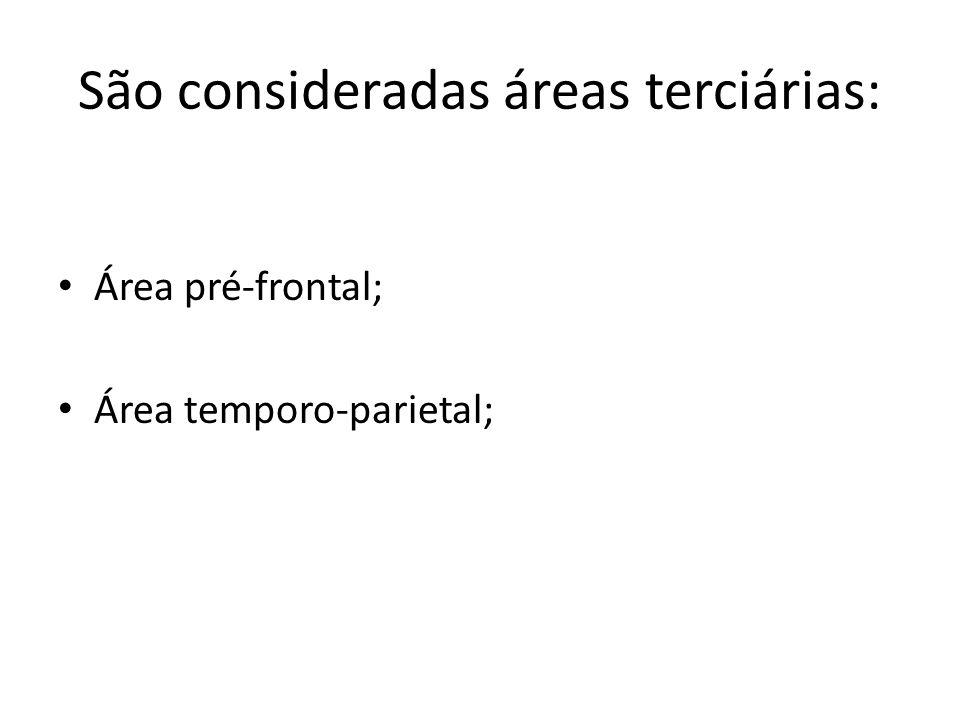 São consideradas áreas terciárias: