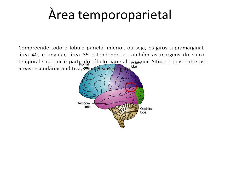 Àrea temporoparietal