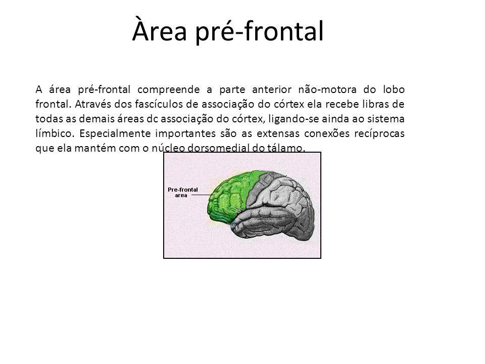 Àrea pré-frontal
