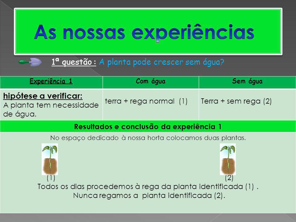 As nossas experiências