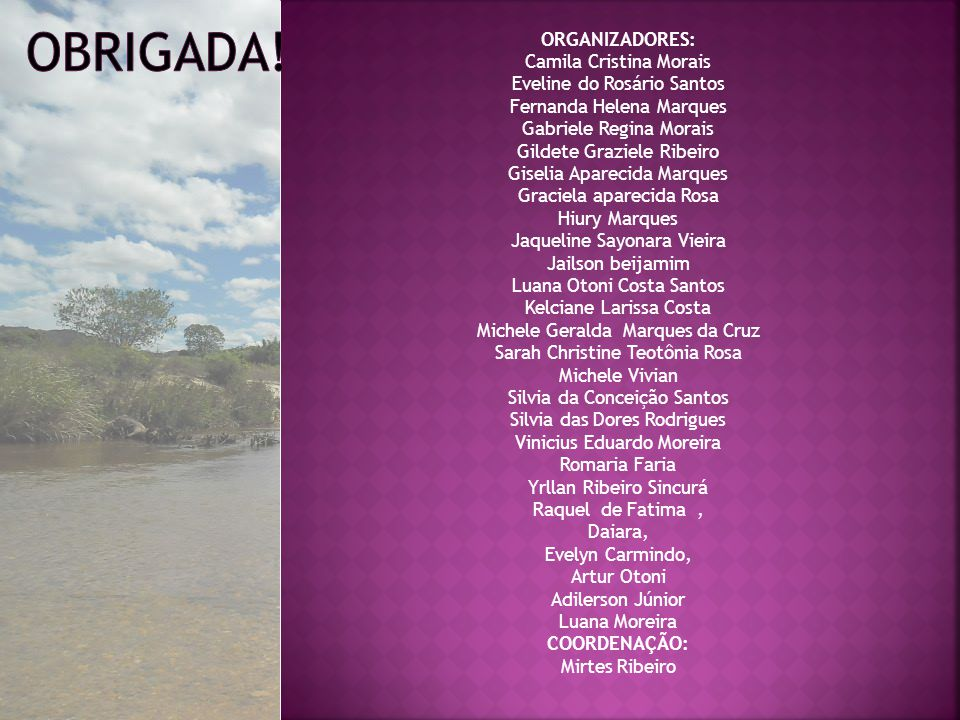 Obrigada! ORGANIZADORES: Camila Cristina Morais