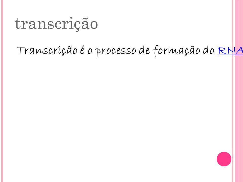 transcrição