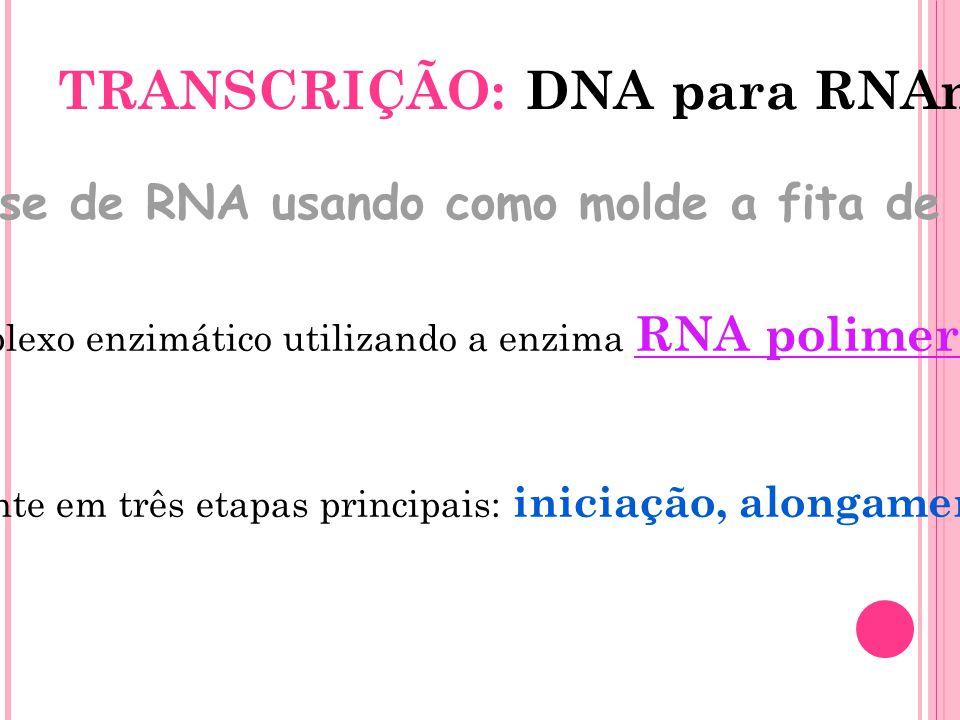TRANSCRIÇÃO: DNA para RNAm