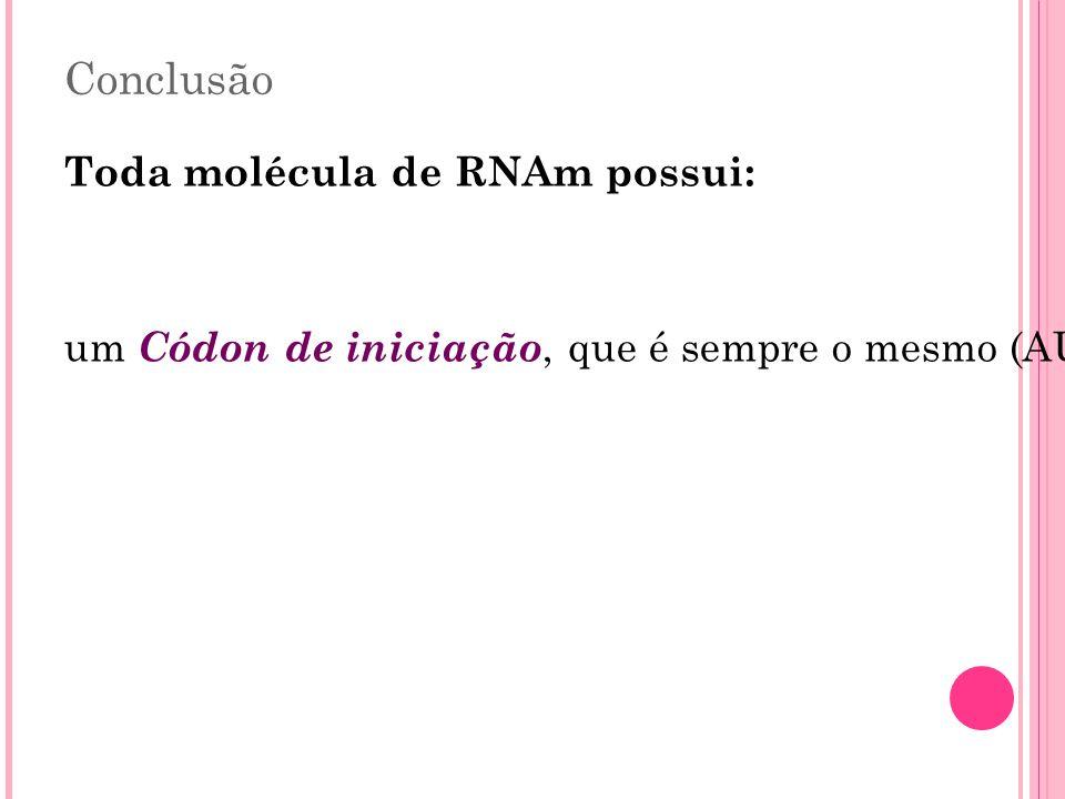 Conclusão Toda molécula de RNAm possui: