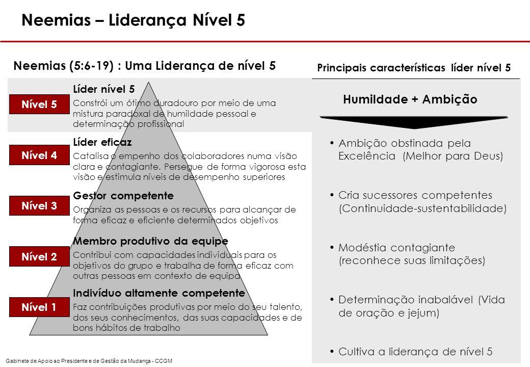 Principais características líder nível 5