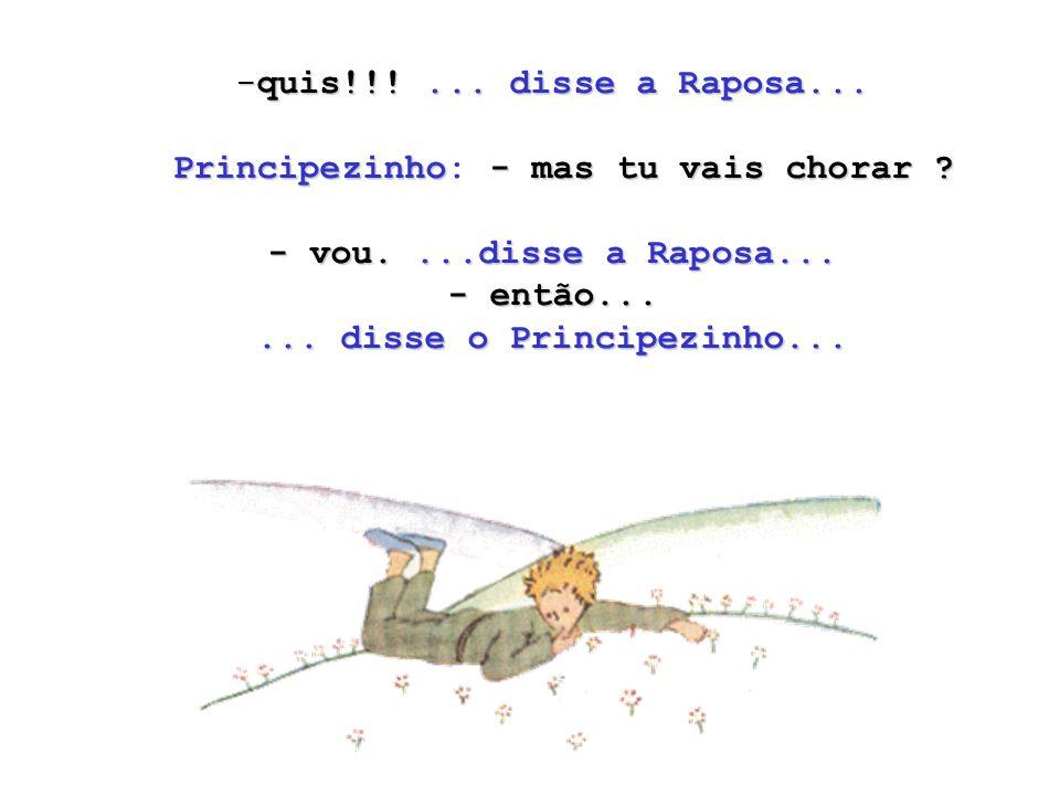 Principezinho: - mas tu vais chorar - vou. ...disse a Raposa...