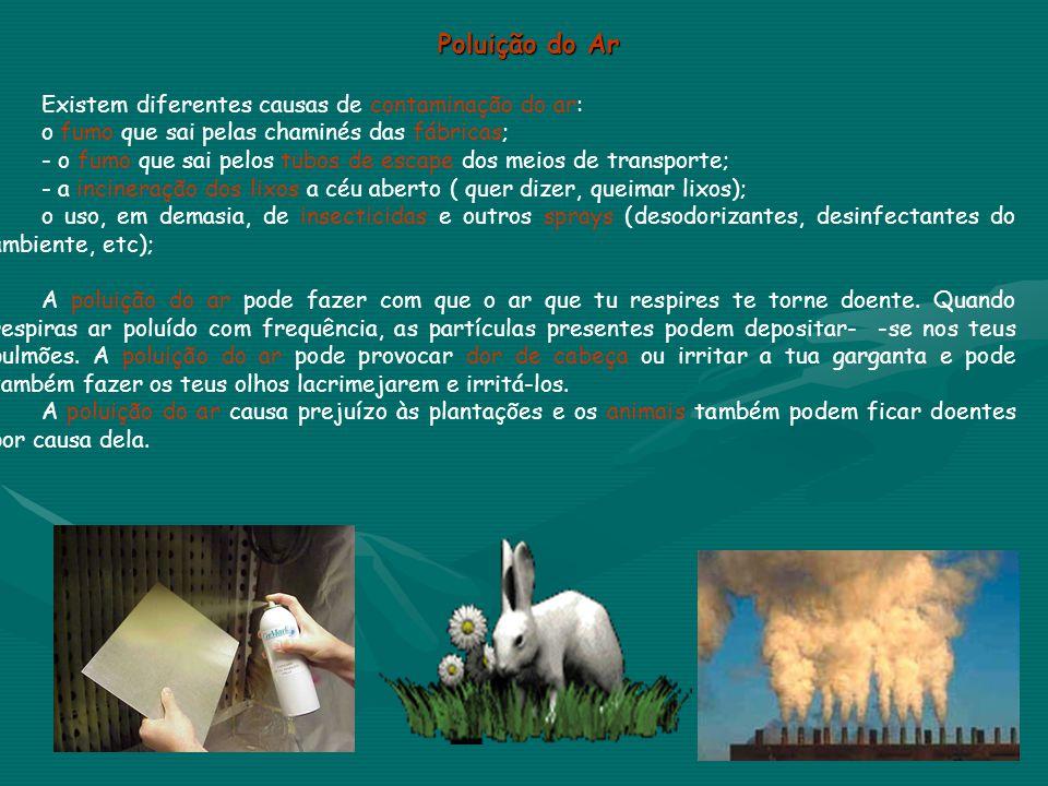 Poluição do Ar Existem diferentes causas de contaminação do ar:
