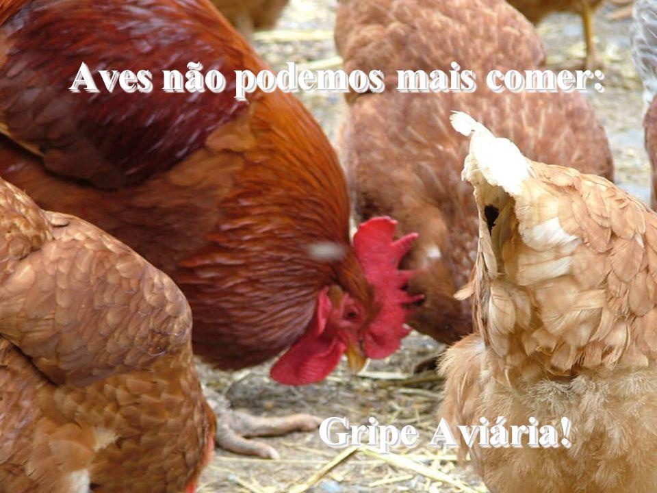 Aves não podemos mais comer: