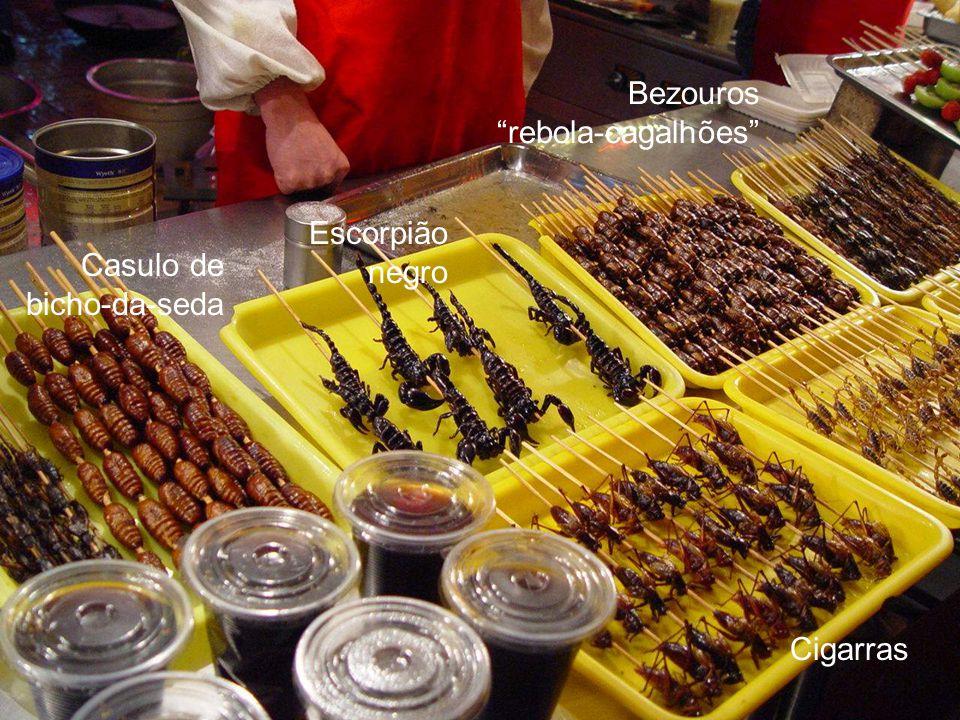 Bezouros rebola-cagalhões Escorpião negro Casulo de bicho-da-seda Cigarras