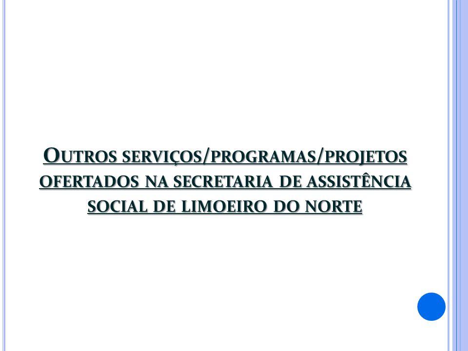 Outros serviços/programas/projetos ofertados na secretaria de assistência social de limoeiro do norte