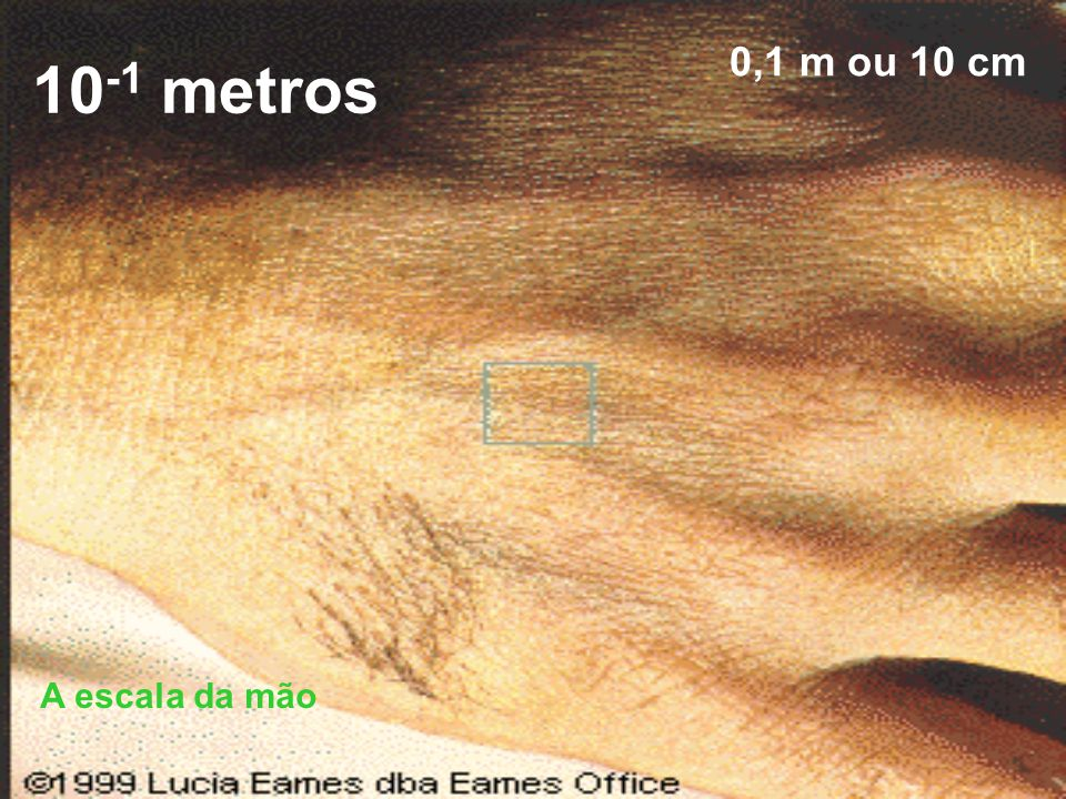 10-1 metros 0,1 m ou 10 cm A escala da mão