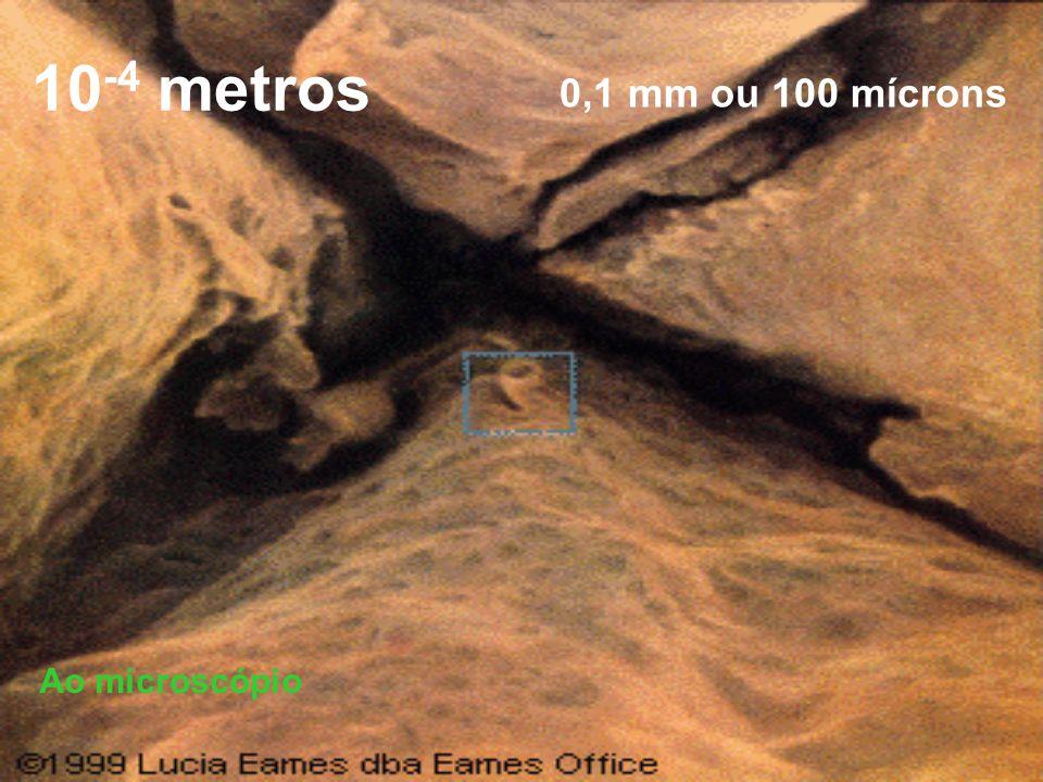 10-4 metros 0,1 mm ou 100 mícrons Ao microscópio