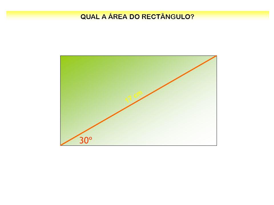 QUAL A ÁREA DO RECTÂNGULO