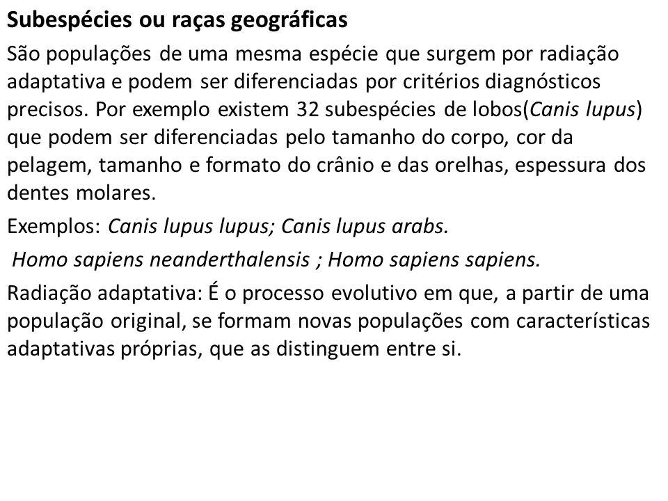Subespécies ou raças geográficas