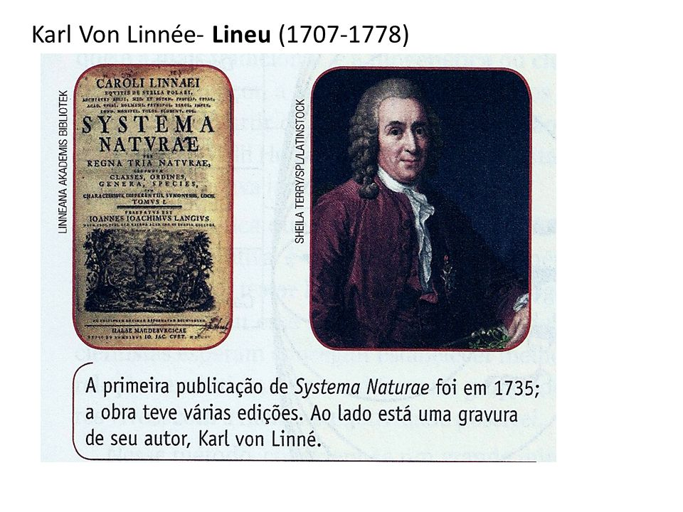 Karl Von Linnée- Lineu (1707-1778)