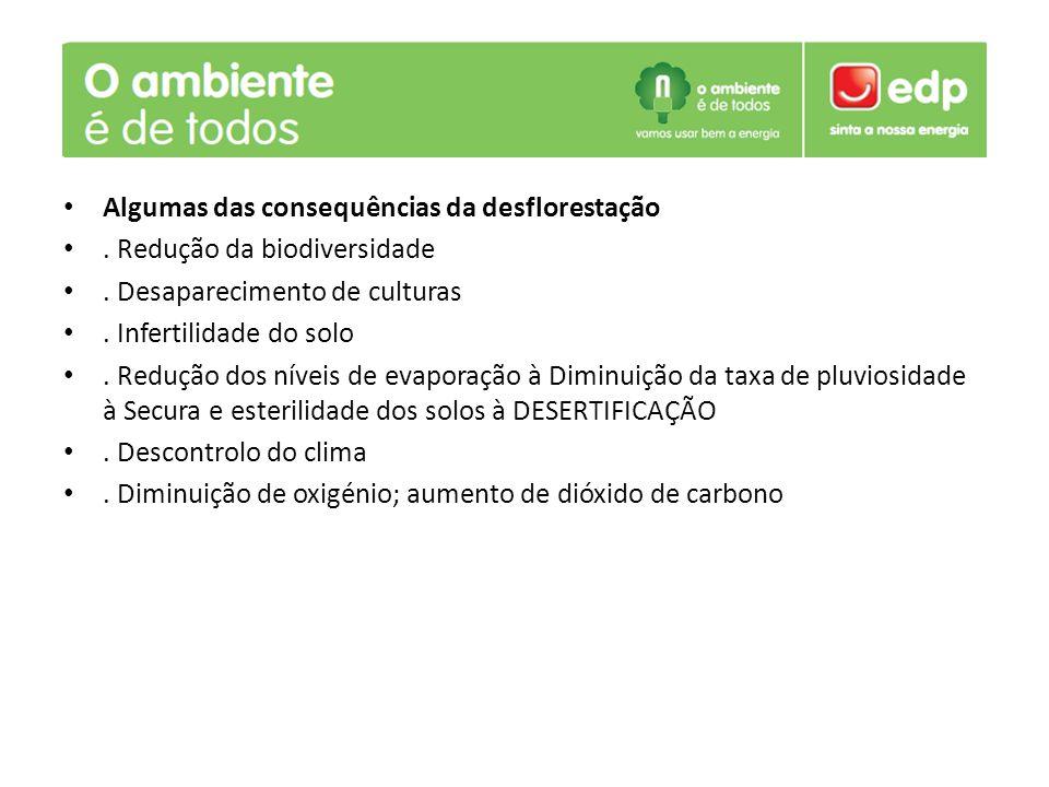 Algumas das consequências da desflorestação