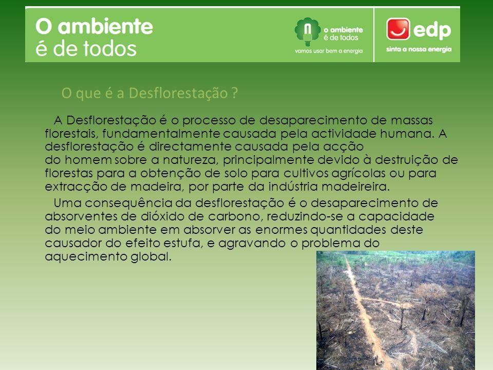 O que é a Desflorestação