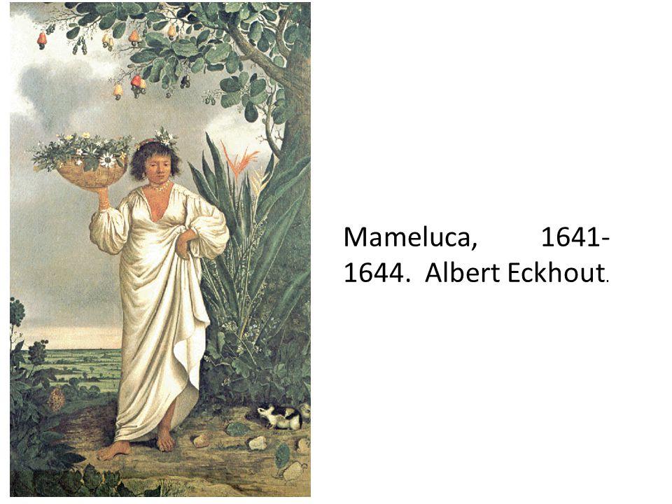 Mameluca, 1641-1644. Albert Eckhout.