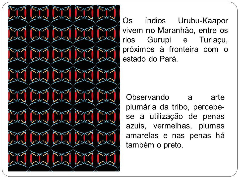 Os índios Urubu-Kaapor vivem no Maranhão, entre os rios Gurupi e Turiaçu, próximos à fronteira com o estado do Pará.