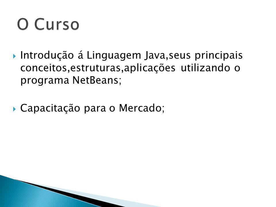 O Curso Introdução á Linguagem Java,seus principais conceitos,estruturas,aplicações utilizando o programa NetBeans;
