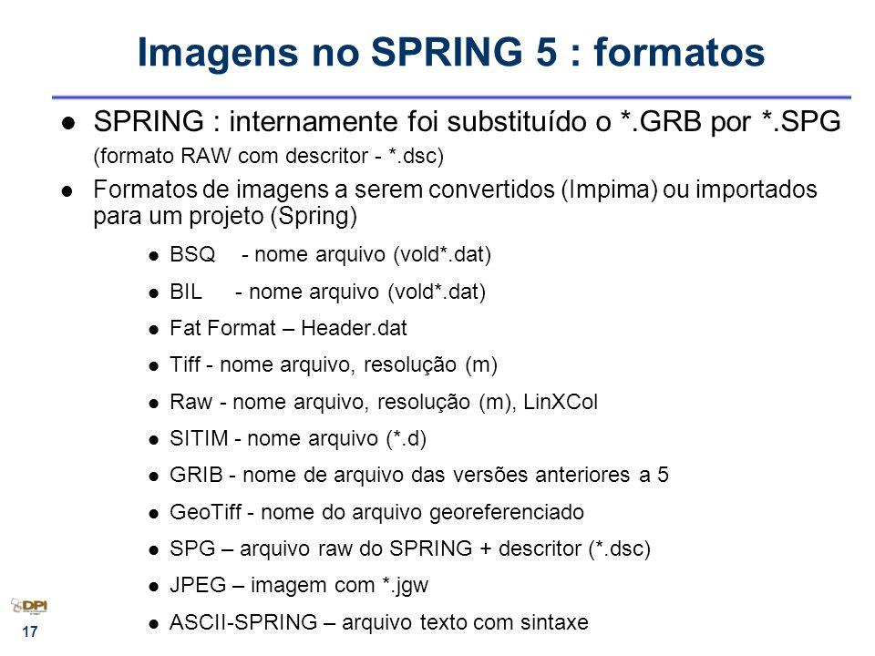 Imagens no SPRING 5 : formatos
