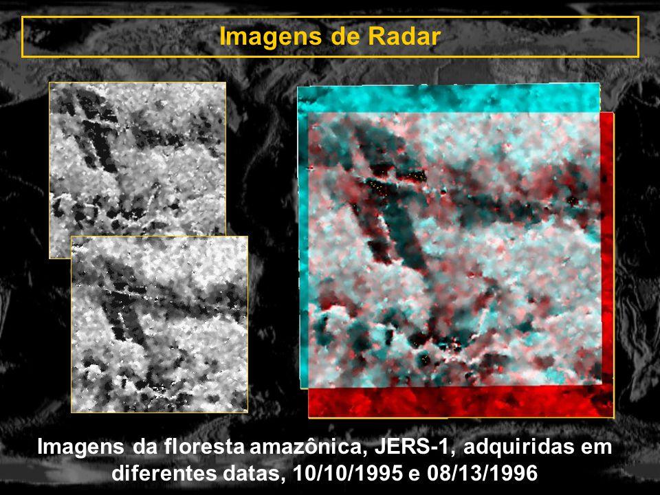 Imagens de Radar Imagens da floresta amazônica, JERS-1, adquiridas em diferentes datas, 10/10/1995 e 08/13/1996.
