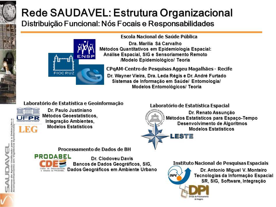 Rede SAUDAVEL: Estrutura Organizacional