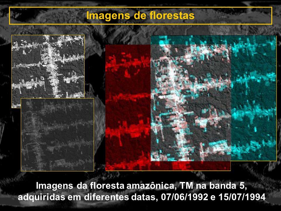 Imagens de florestas Imagens da floresta amazônica, TM na banda 5, adquiridas em diferentes datas, 07/06/1992 e 15/07/1994.