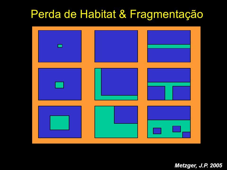 Perda de Habitat & Fragmentação