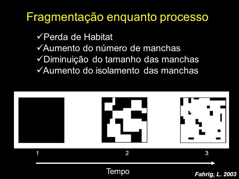 Fragmentação enquanto processo