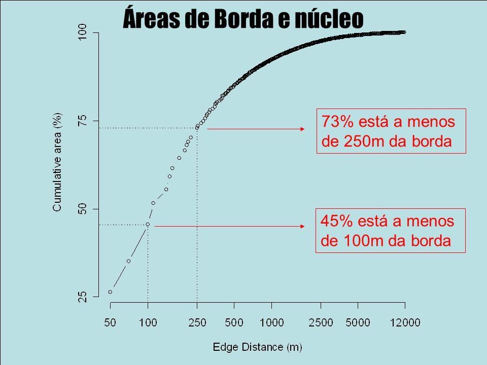 Áreas de Borda e núcleo 73% está a menos de 250m da borda