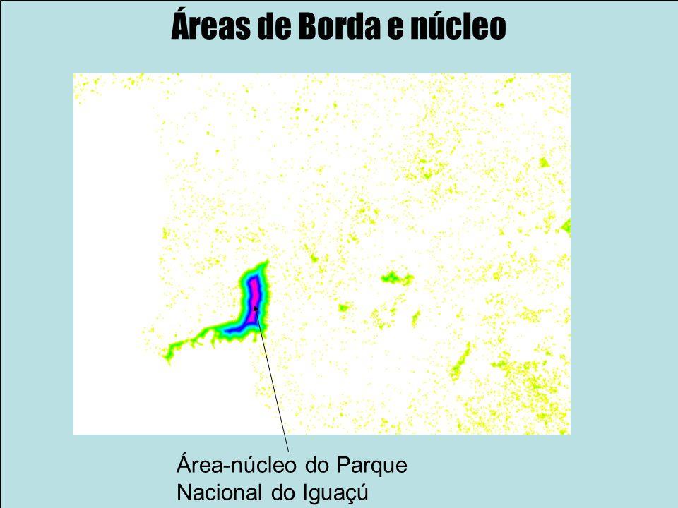 Áreas de Borda e núcleo Área-núcleo do Parque Nacional do Iguaçú