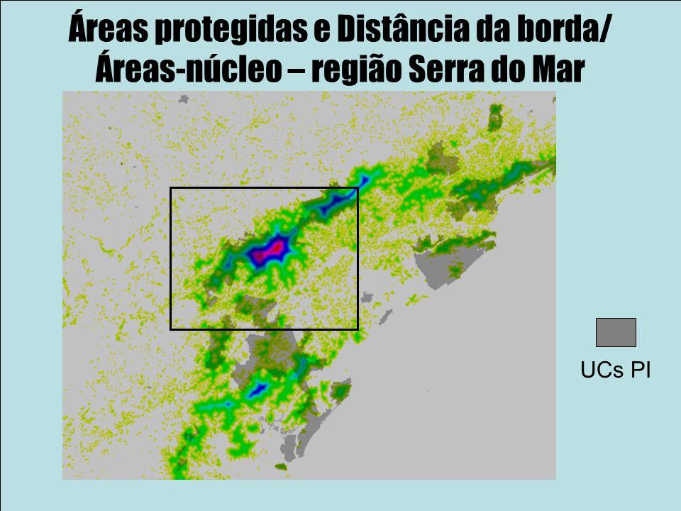 Áreas protegidas e Distância da borda/ Áreas-núcleo – região Serra do Mar