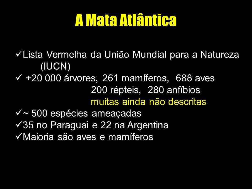 A Mata Atlântica Lista Vermelha da União Mundial para a Natureza (IUCN) +20 000 árvores, 261 mamíferos, 688 aves.