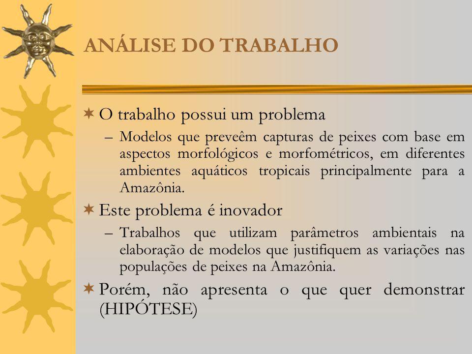ANÁLISE DO TRABALHO O trabalho possui um problema